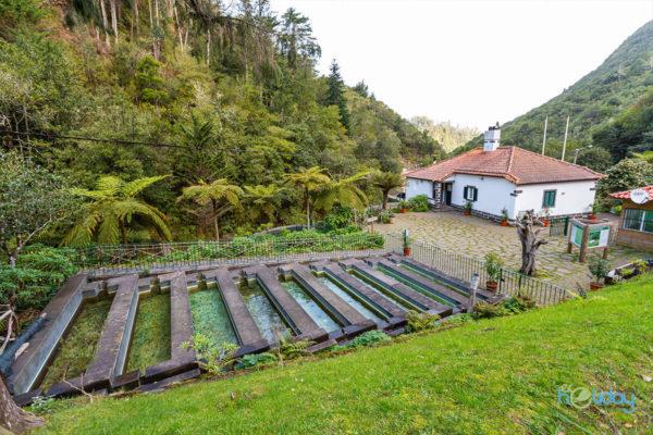 Full Day Tours: East - Ribeiro Frio